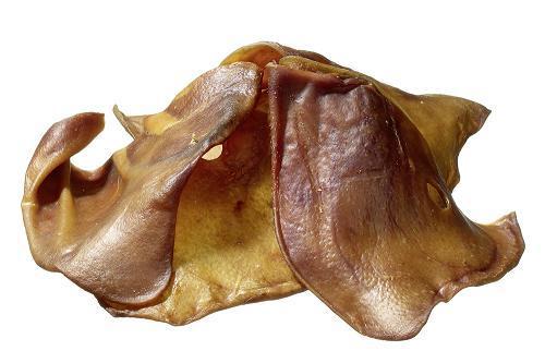 """Résultat de recherche d'images pour """"oreilles de cochon chien"""""""